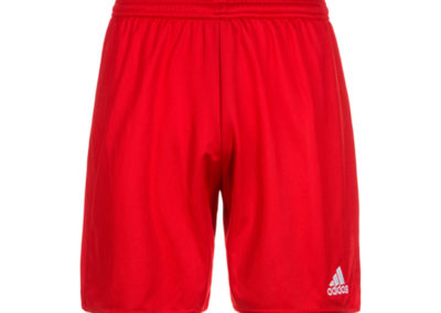 Rock Celtic FC Shorts